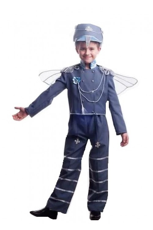 Жук комарик, муха