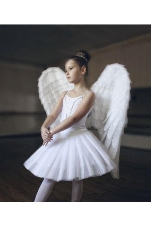 Крылья белые маленькие